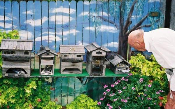 como-mailbox-painting-flowers-um