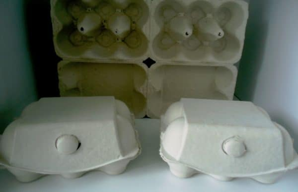 egg-paper-boxes