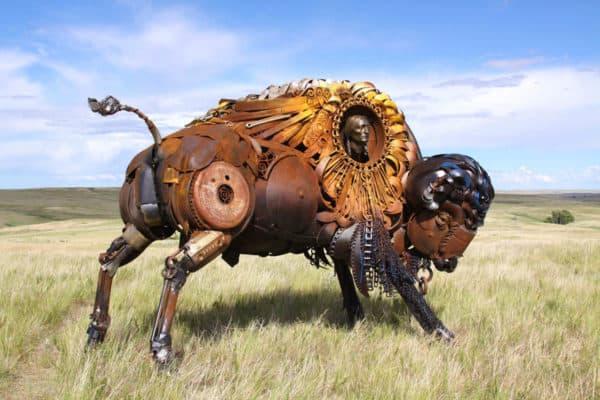 bison-john-lopez
