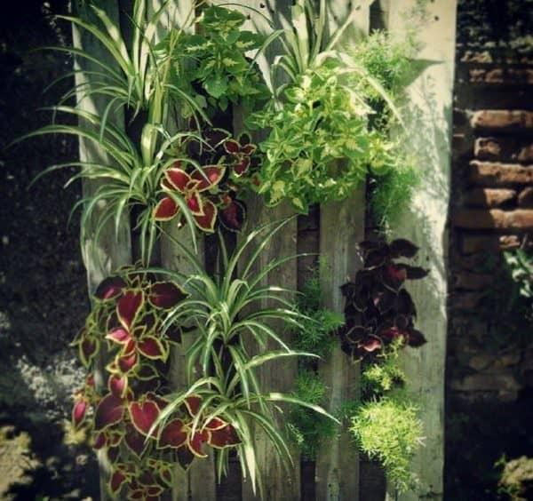 pallet-planters3