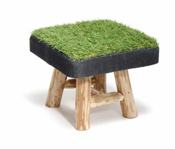 GRASS-S-APP