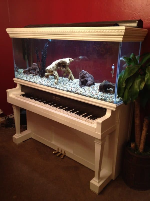 piano-fish-tank