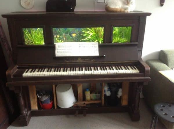 Piano-aquarium