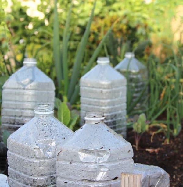 bottle-greenhouse-apieceofrainbowblog-11b