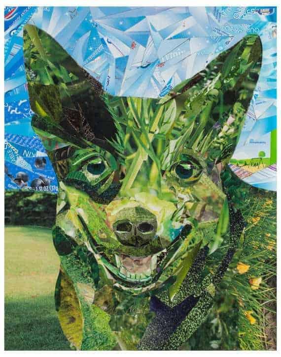 etsy-dog