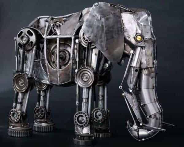 elephantandrewchase
