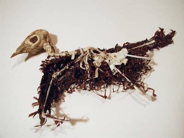 brian-dettmer-cassette-tapes-skull10