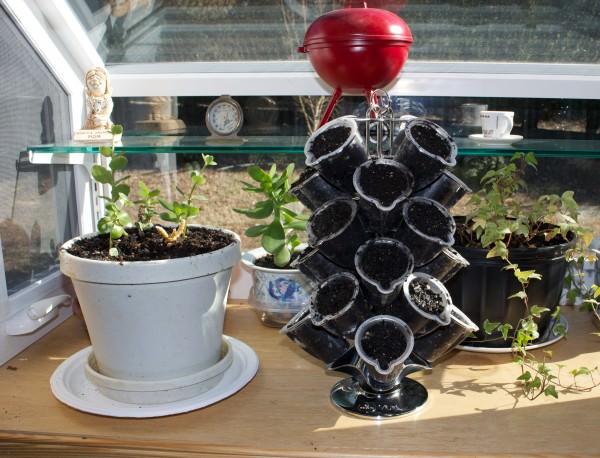 recyclart.org-a-vue-to-an-herb-garden