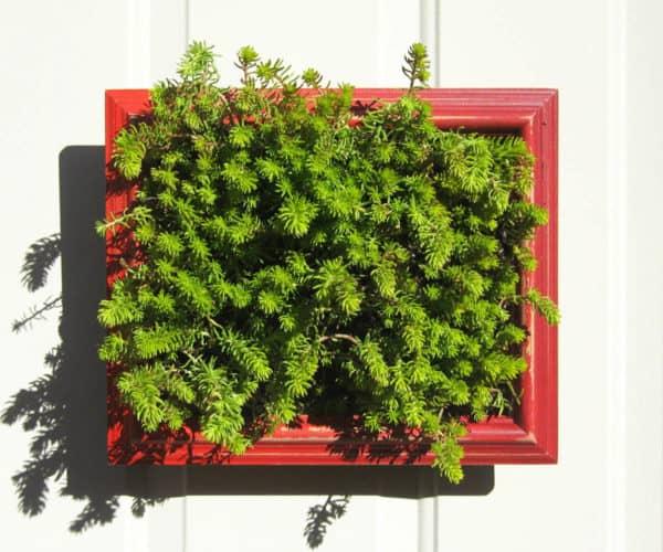recyclart.org-vertical-planter-frames1