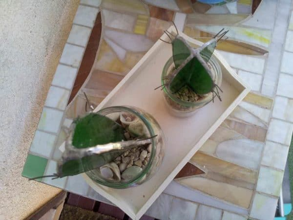 recyclart.org-glass-recycling-cactus1