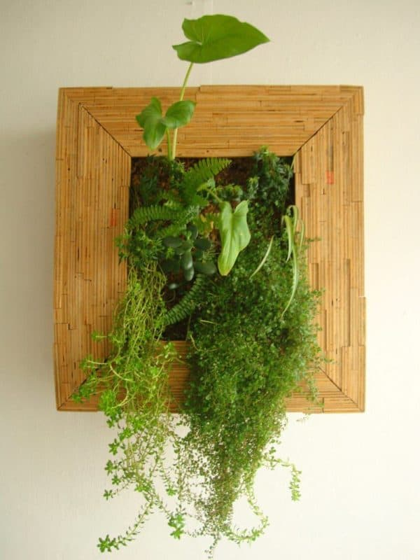 recyclart.org-living-wood-frame-made-recycling