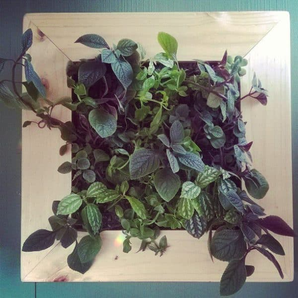 recyclart.org-living-wood-frame-made-recycling8