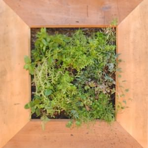 recyclart.org-living-wood-frame-made-recycling2