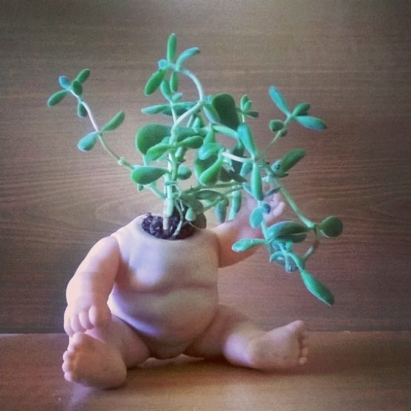 Naturaleza es futuro. #upcycle #Toy #plants