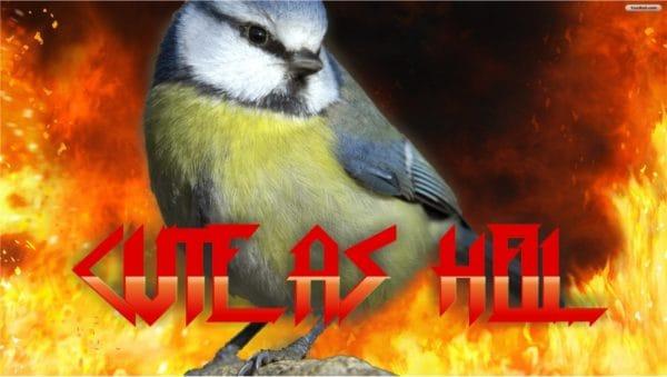 A Tit Birds Feeder From Kitchen Spatula 3 • Garden Ideas
