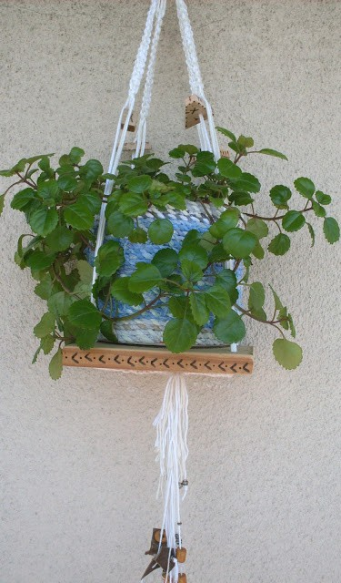 Macrame Plant Holder5