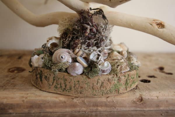 Driftwood Holiday Trees Add Natural Beauty 15 • Lamps & Lights
