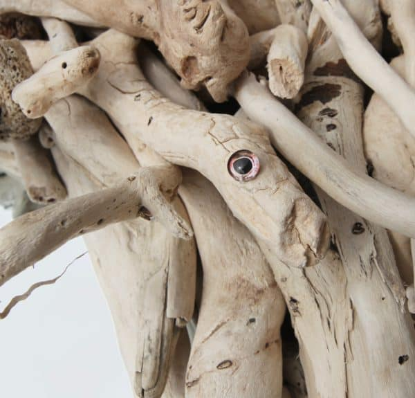 Driftwood Mirror Frame: The Eyes Have It! 7 • Wood & Organic