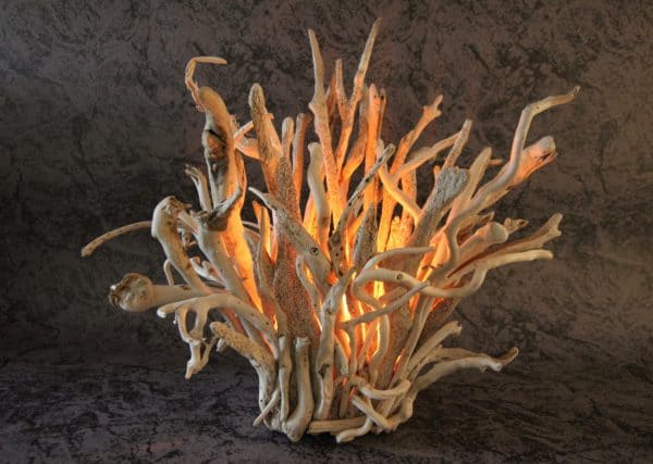 Naturally Beautiful Driftwood Eye Lamps 11 • Lamps & Lights