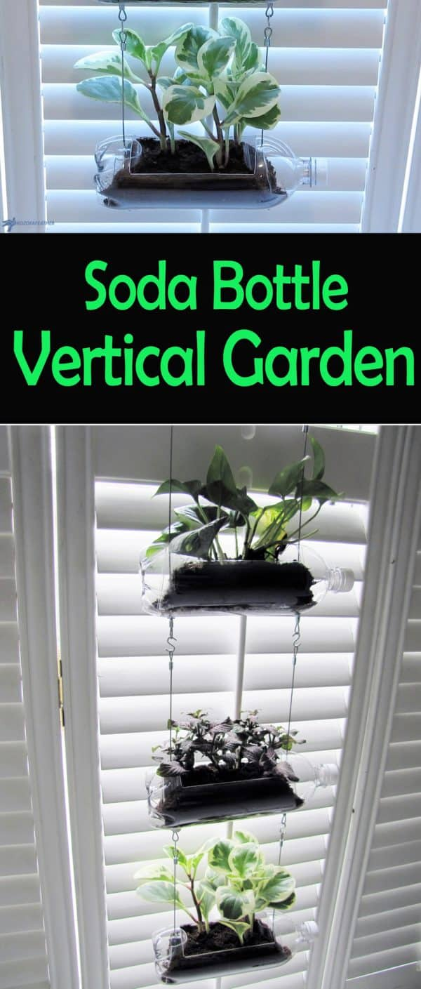 The clear Soda Bottle Vertical Garden will let your kids watch the root systems develop as the plant gets larger.