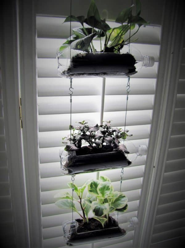 This trio of Soda Bottle Vertical Garden planters allows you to use that sunny window to the maximum.