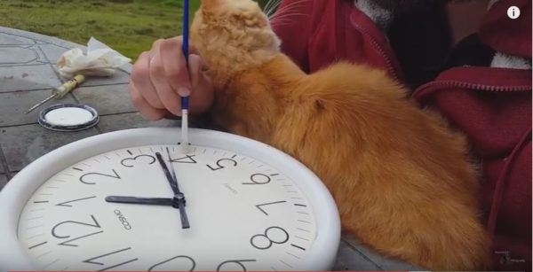 Have a family member or friend join in, including your pets, because it's more fun to do a project like this Glow-in-the-Dark Clock together.