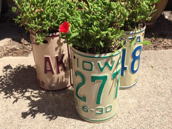 Collect your favorite states, or get those special ones for family members and plant succulents or other cute little plants in these License Plate Planters