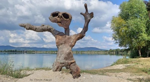 Sculptures like this E.T. Driftwood Art are items the artist creates.