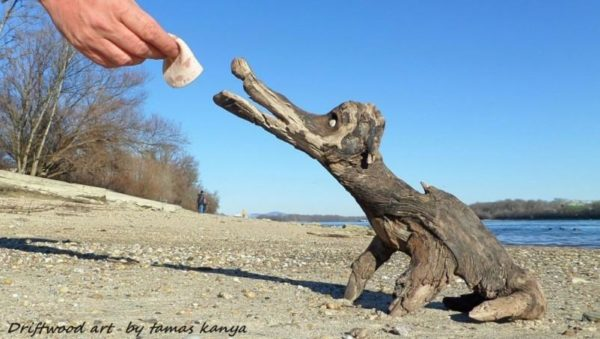 Don't feed the Driftwood Art critters!