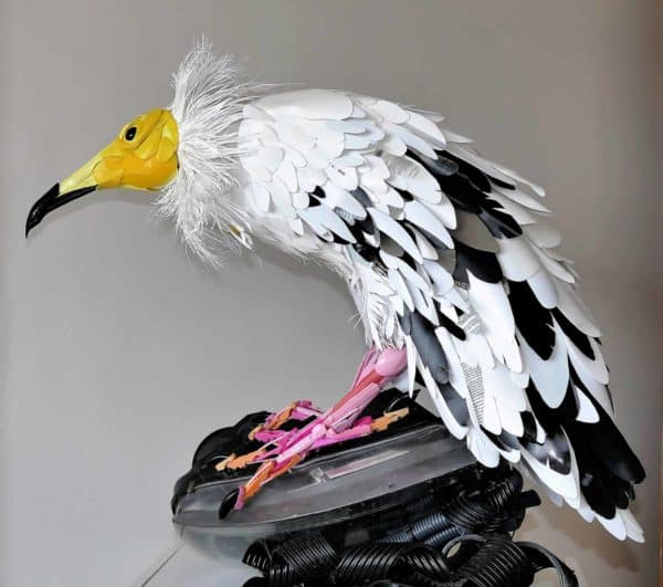 Egyptian Vulture From Recycled Household Plastics 1 • Recycled Art