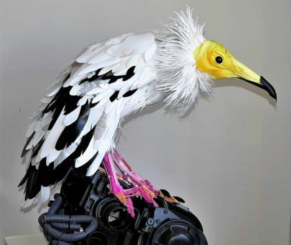 Egyptian Vulture From Recycled Household Plastics 3 • Recycled Art