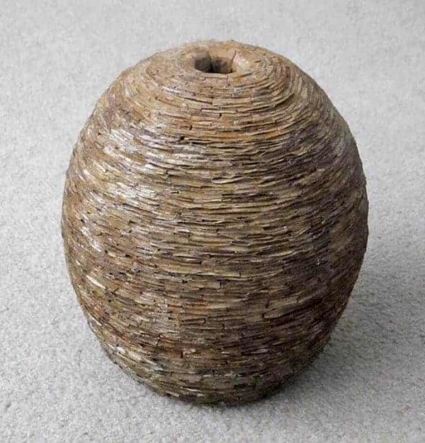 Recycled Cardboard Wasp Nest Pot 3 • Recycled Cardboard