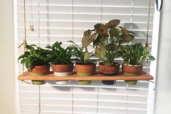 Cedar Plant Swing Holder 3 • Garden Ideas