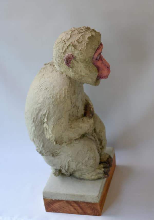 Recycled Egg Box Into Japanese Snow Monkey 3 • Recycled Art