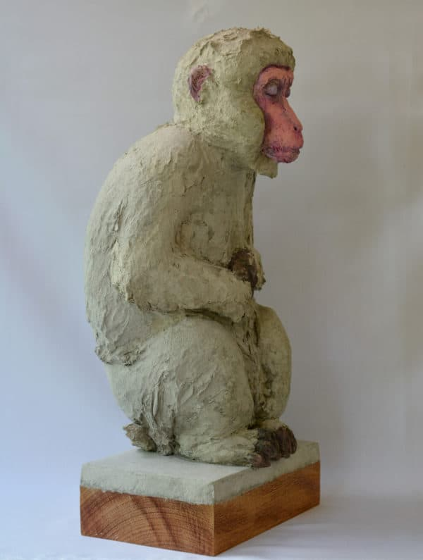 Recycled Egg Box Into Japanese Snow Monkey 9 • Recycled Art
