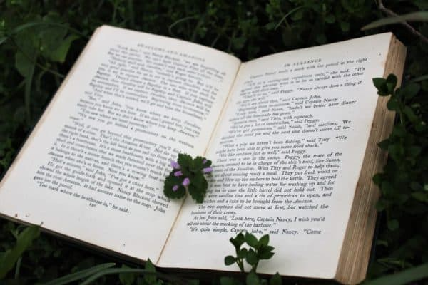 It's the Moment to Reuse Waste Paper – Here Are Some Clever Ways to Do It 1 • Recycling Paper & Books