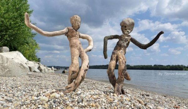 The Reincarnation of Driftwood by Tamas Kanya 13 • Wood & Organic