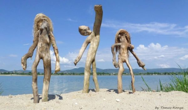 The Reincarnation of Driftwood by Tamas Kanya 5 • Wood & Organic