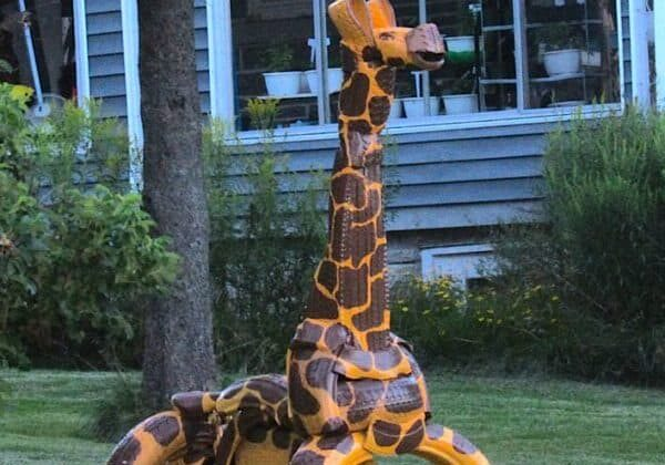 Girafe-Tire-Bike