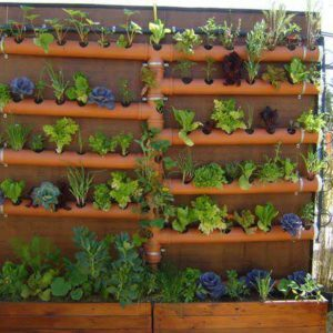 pipes planter