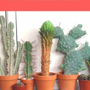 recyclart.org-cardboard-cactuses-for-your-home-decor-1