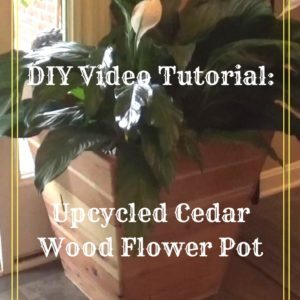 recyclart.org-diy-video-tutorial-reclaimed-cedar-flower-pot-02