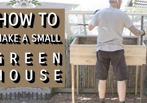small-greenhouse-you-tube-thumbnail