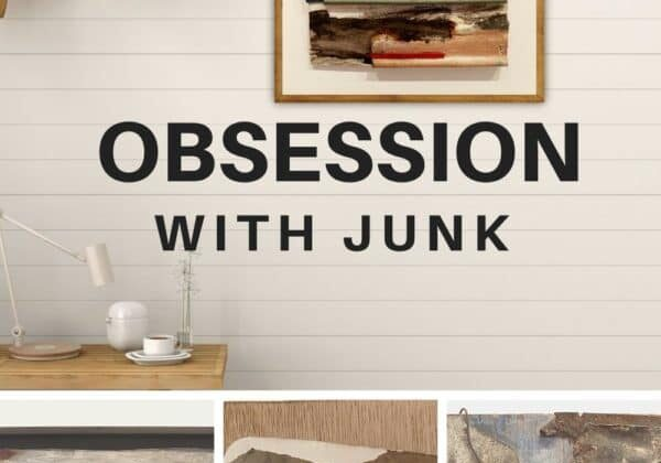 I Harbour An Obsession With Junk