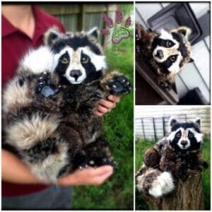recyclart.org-recycled-clothing-raccoon-noni