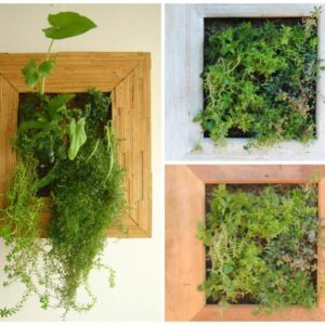 living-wood-frame-planter