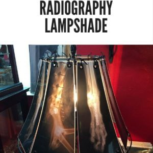 recyclart.org-x-ray-radiography-lampshade-01