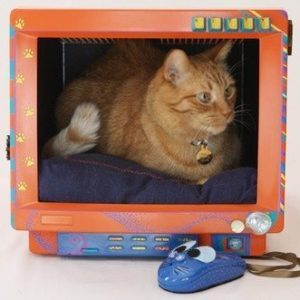 recycled-cat-bed-430-x-331